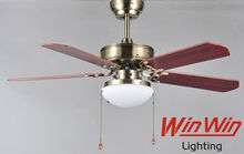 LED rotor ceiling fan with light