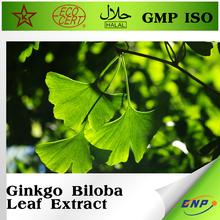 alibaba China ginkgo biloba leaf extract powder