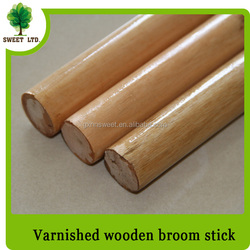 Mops Varnished Painted Wood Handle
