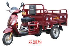 Three wheel motorcycle scooter trike chopper HZ110ZH-B2