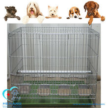 Cheap Zinc Plating Iron Wire Bird Cage