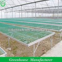 Multi-span Industrial Film Greenhouse Sale