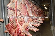 Beef Carcass