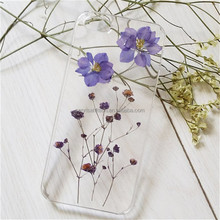 for iphone 6 plus Fashion Dry pressed natural real flower cell phone case for iphone 6 plus