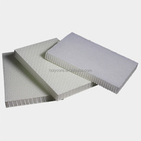 light weight pp plastic honeycomb raw material sheet sandwich panel monopan for truck body or construction material