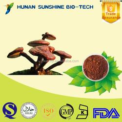 china natural product ganoderma extract Reishi Mushroom Polysaccarides 10% Triterpene 3%