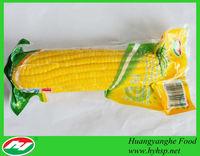 Fresh Corn Producer