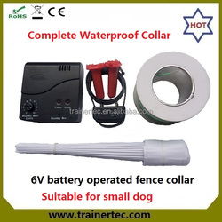 Small dog waterpoor inground Electric dog fence