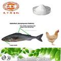 Cosméticos de colágeno tipo ii de pollo extracto de colágeno en polvo/super colágeno hidrolizado de colágeno de pescado/polvo de colágeno marino