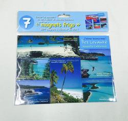 hot selling promotion fridge magnet/tourist fridge magnet/ tourist products