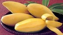 Fresh Mango: High Quality and Competitive Price
