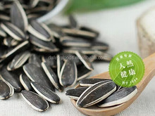 Chinese hybrid sunflower seed for planting