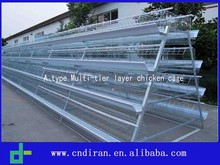 Wholesale Bird Cages / Layer Egg Chicken Cage/ Poultry Farm House Design
