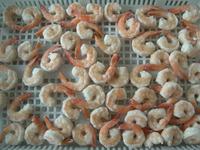 High Quality Frozen Vannamei White Shrimp