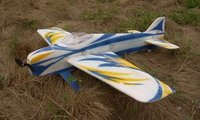R/C Shark-slayer Aerobatic F3a Airplane