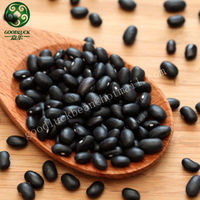 NON GMO Dried Black Beans