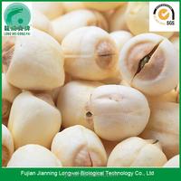 Wholesale Dried Lotus Seeds
