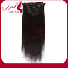 Free Shipping 2014 Hot Selling Factory Price 16Inch 100% Virgin Remy Brazilian Hair Clip In Hair