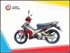 The unique new design 125cc ,110cc ,70cc , 50cc cub motorbike /110cc /70cc scooter / cub motorcycle