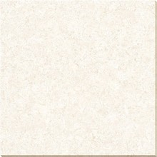 600x600 Tulip Polished Vitrified Porcelain Floor Tiles X6PT004