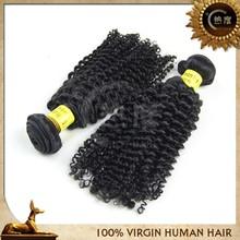 Unprocessed 5A 6A 7A Grade virgin Brazilian 7A Human Hair afro kinky curly