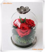 handmade preserved flower craft in glass