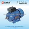 Single Phase Induction electric motor