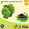 Solvent Extraction Type Powder Form Water Soluble Natural Anti-oxidant Grape Skin Extract Powder