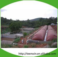 Teenwin 2000m3 soft biogas/digester Plant for pig farm waste treatment