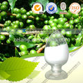 caffè verde estratto di fagiolo