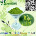 organique de thé vert matcha en poudre