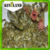 best quality dark green pumpkin kernel