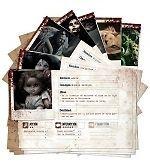 Fragmentos: Tarjetas de monstruos y personajes - Juego de Rol