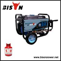 Bison China Zhejiang AVR For Generator Welder 3KVA 3KW 3000W LPG Gas Portable Kerosene Generator