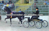 Showing ring carriage/Horse showing mini sulky/Viceroy carriage, on sale