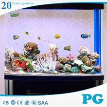 PG fantastic pet fish for sale