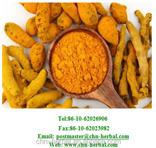 Ginger Root Extract, Ginger extract powder, Ginger extract curcumin 95%,