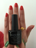 private label nail polish/ nails polish for professional with free sample