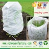 Wholesale China agriculture tree grow bags, top selling hanging grow bags