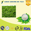 100% natural best quality stevia extract rebaudioside stevia powder