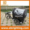 lithium battery 3 wheel tricycle cargo bike design for european used