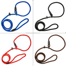 Dog slip lead slip leads for dogs