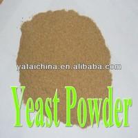 Yeast Powder