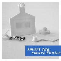 Nexqo RFID UHF Ear Tag for Animal Management