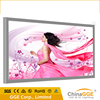 Giant size aluminum frame/profile movie poster light box
