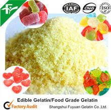 China Supplier Health Food,Edible Gelatin/Food Grade Gelatin
