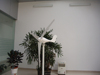 300w wind power generator on the rooftop low price