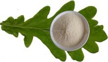 Kosher certificado planta cogumelo fonte quitosana fibra para o vegan