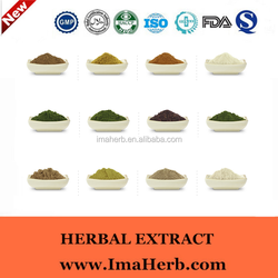 Excellent OEM Factory Supply saw palmetto extract powder