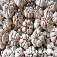 2015 Top Grade New Fresh White Garlic 5.0cm, Pure Natural Garlic Chinese Common Cultivation Type Allium sativum Exports